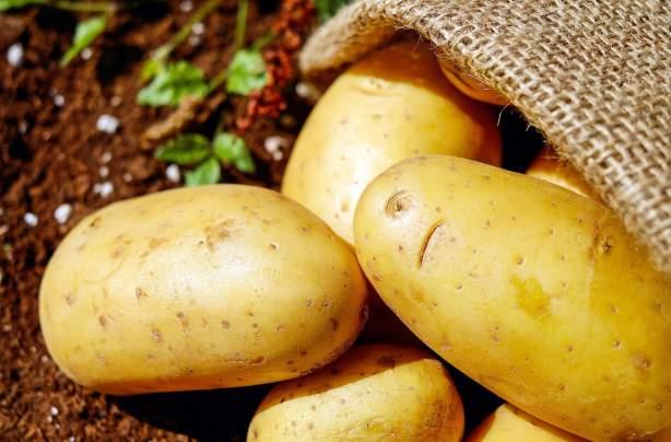 Pommes de terre | La Marnière